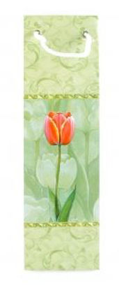 Picture of Bottle Gift Bag - Floral - Apple Green - Designs May Vary Slightly