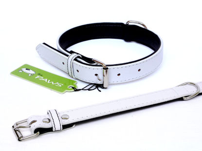 Picture of Fusion White Collar - Large