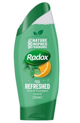 Picture of RADOX Feel Refreshed Shower Gel - 250ml