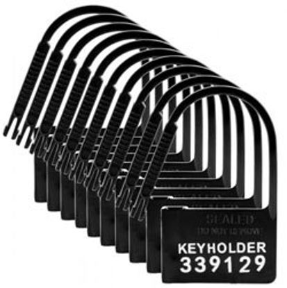 Picture of 10 Pack of Locks for Chastity Devices