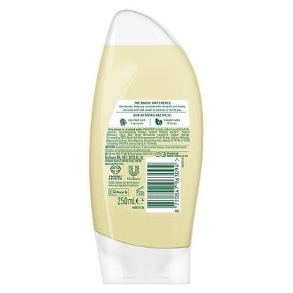 Picture of Radox Nourishing Shower Gel