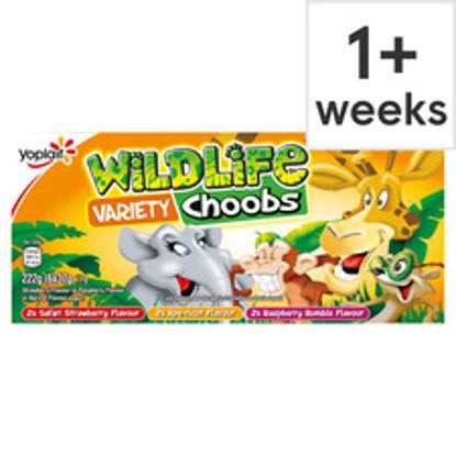 Picture of Wildlife Choobs Strawberry Raspberry & Apricot Yogurt 6X37g