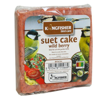 Picture of King Fisher Suet Cake with Wild Berries