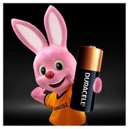 Picture of Duracell MN21 Battery Alkaline for Camera Calculator or Pager 1.2V (Pack 2)