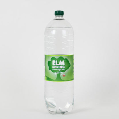 Picture of Elm Spring Sparkling Water 2l