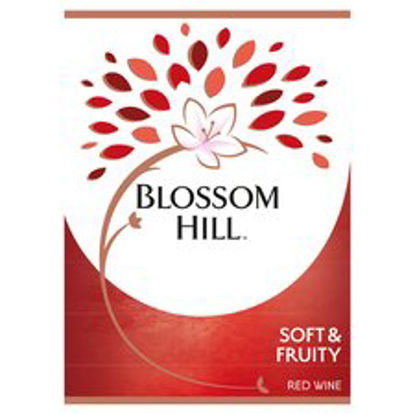 Picture of Blossom Hill Soft & Fruity 18.7Cl