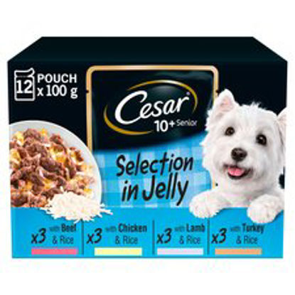 Picture of Cesar Senior 10+ Selection In Jelly 12X100g