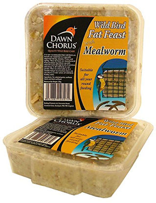 Picture of DAWN FAT FEAST WITH MEALWORM