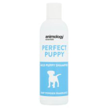 Picture of Animology Mild Puppy Shampoo Baby Powder 250Ml