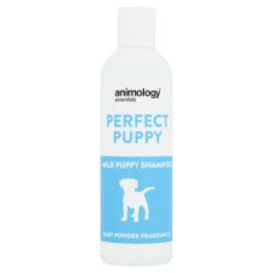 Picture of Animology Mild Puppy Shampoo Baby Powder 250Ml
