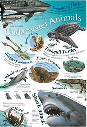 Picture of Underworld Animals Wall Chart / Poster - 76cm x 52cm