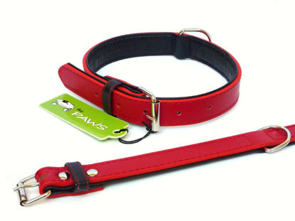 Picture of Fusion Red Collar - Large