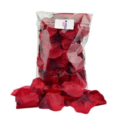 Picture of Loving Joy Rose Petals